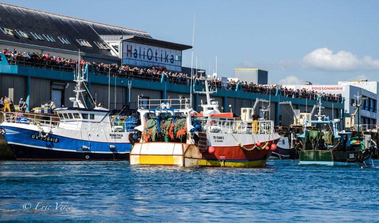 Les activités dans le Finistère : HALIOTIKA - LA CITÉ DE LA PÊCHE