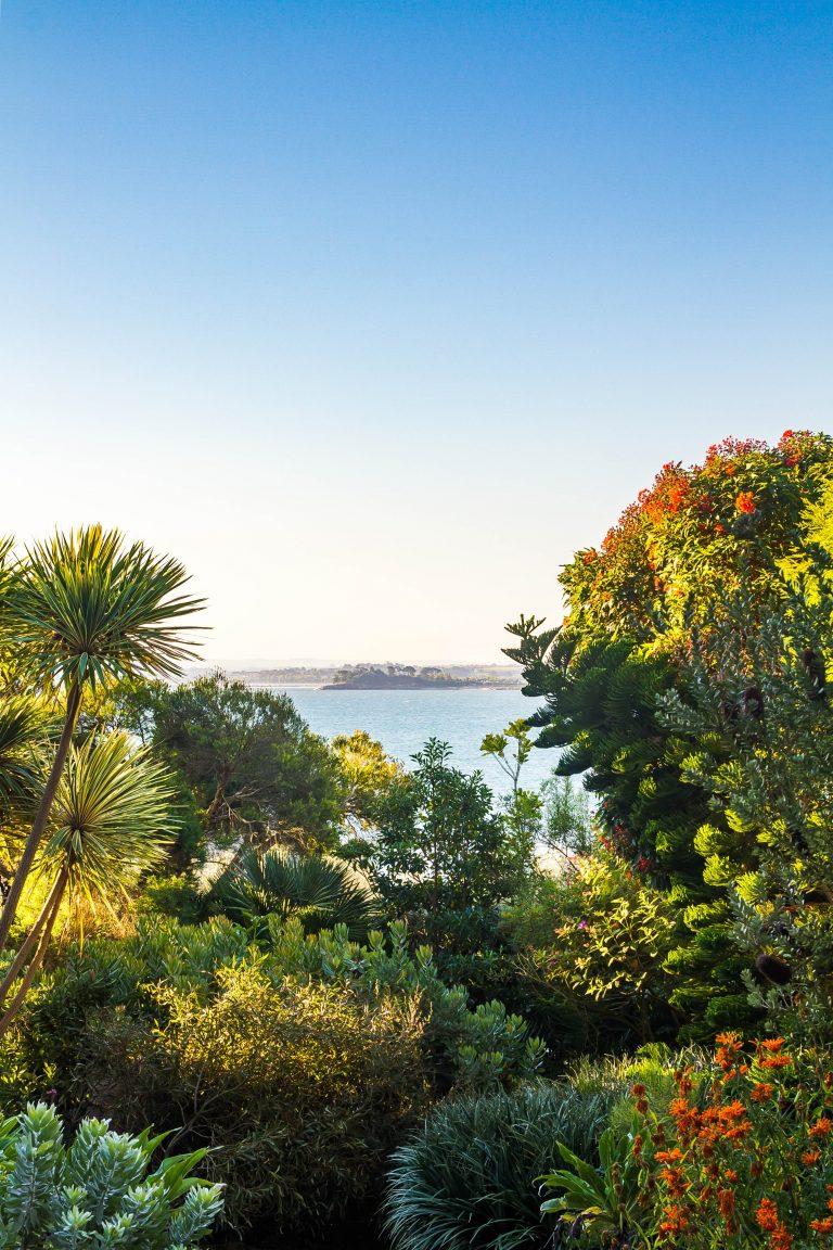 Les activités dans le Finistère : JARDIN EXOTIQUE ET BOTANIQUE